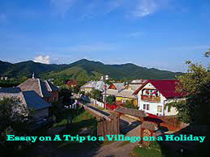 Essay on A Trip to a Village on a Holiday