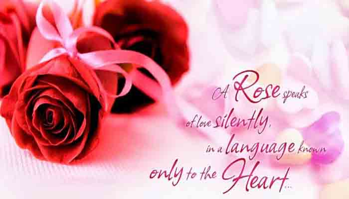 Rose Day Download Image, Rose Day 2019, Rose Day Image, Rose Day English SMS, Rose Day Quotes Rose Day Greetings, Rose Day Gift, Rose Day HD Photos, Rose Day Image 2018, Rose Day India, Rose Day Love Status Happy Rose Day Message,