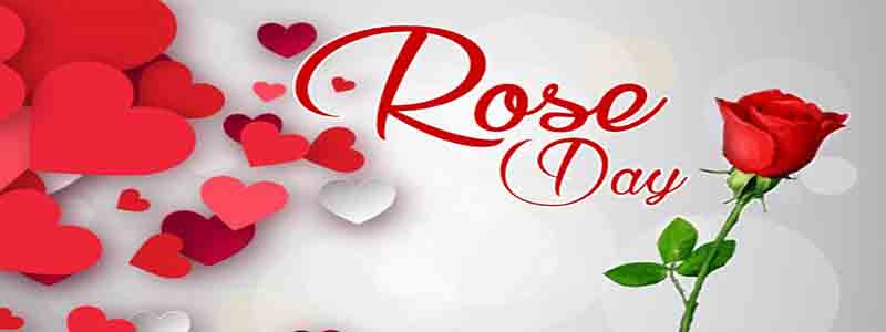 Happy Rose Day picture, Images, Quotes , Message for Girlfriend, Boy friend, Husband and Wife