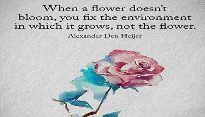 Rose Day Download free Image, Rose Day 2019, Rose Day Image, Rose Day English SMS, Rose Day Quotes images , Rose Day Gift, Rose Day HD Photos, Rose Day Image 2018, Rose Day India, Rose Day Love Status Happy Rose Day Message,