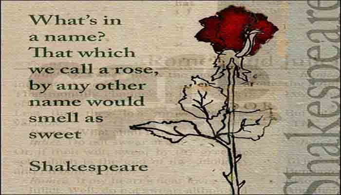 Happy Rose Day Picture Images Quotes Message For Girlfriend Boy